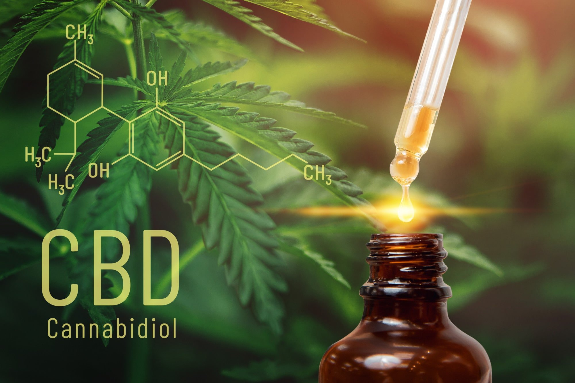 How to consume cbd